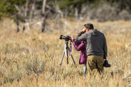 Grand Teton Landscape and Wildlife Workshop | September 22nd