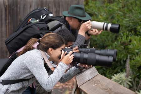 Wildlife Photography Workshop Students with Aperture Academy at the San Francisco Zoo