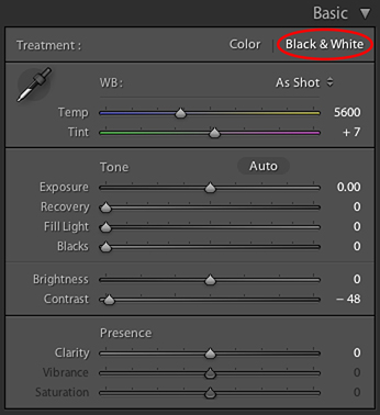 How-To Guide: Easily Convert Your Photo to Grayscale Using Lightroom